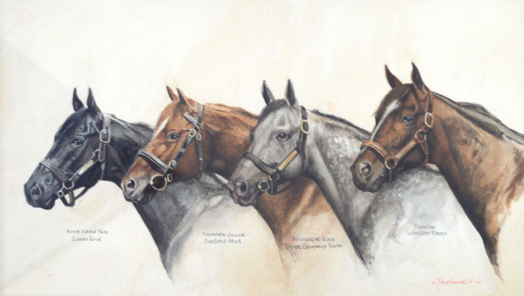 Kentucky Stallions